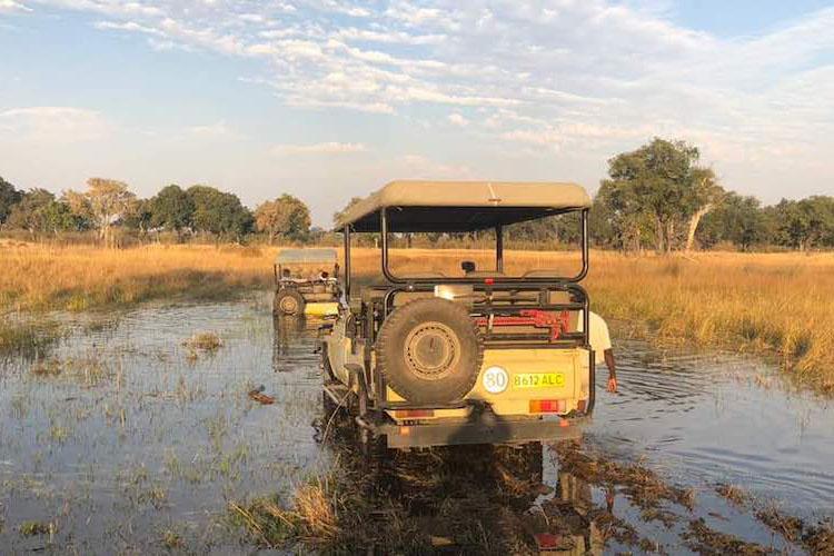 travel-report-botswana-blog-malawian-style-game-drives