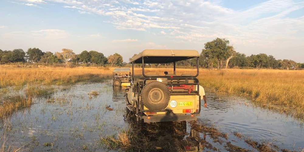 travel-report-botswana-blog-malawian-style
