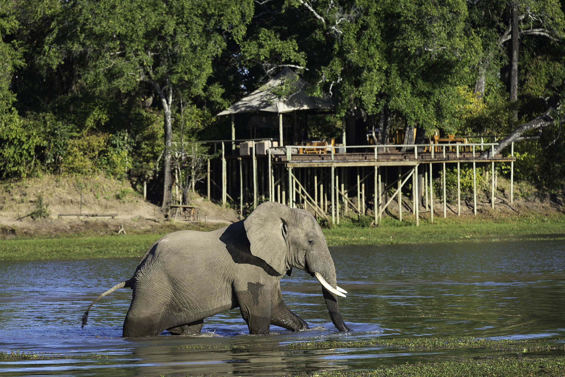 tours women-only-trips-malawian-style-malawi-adventures-experiences-holidays-specialist-tour-operator-elephants-chindeni