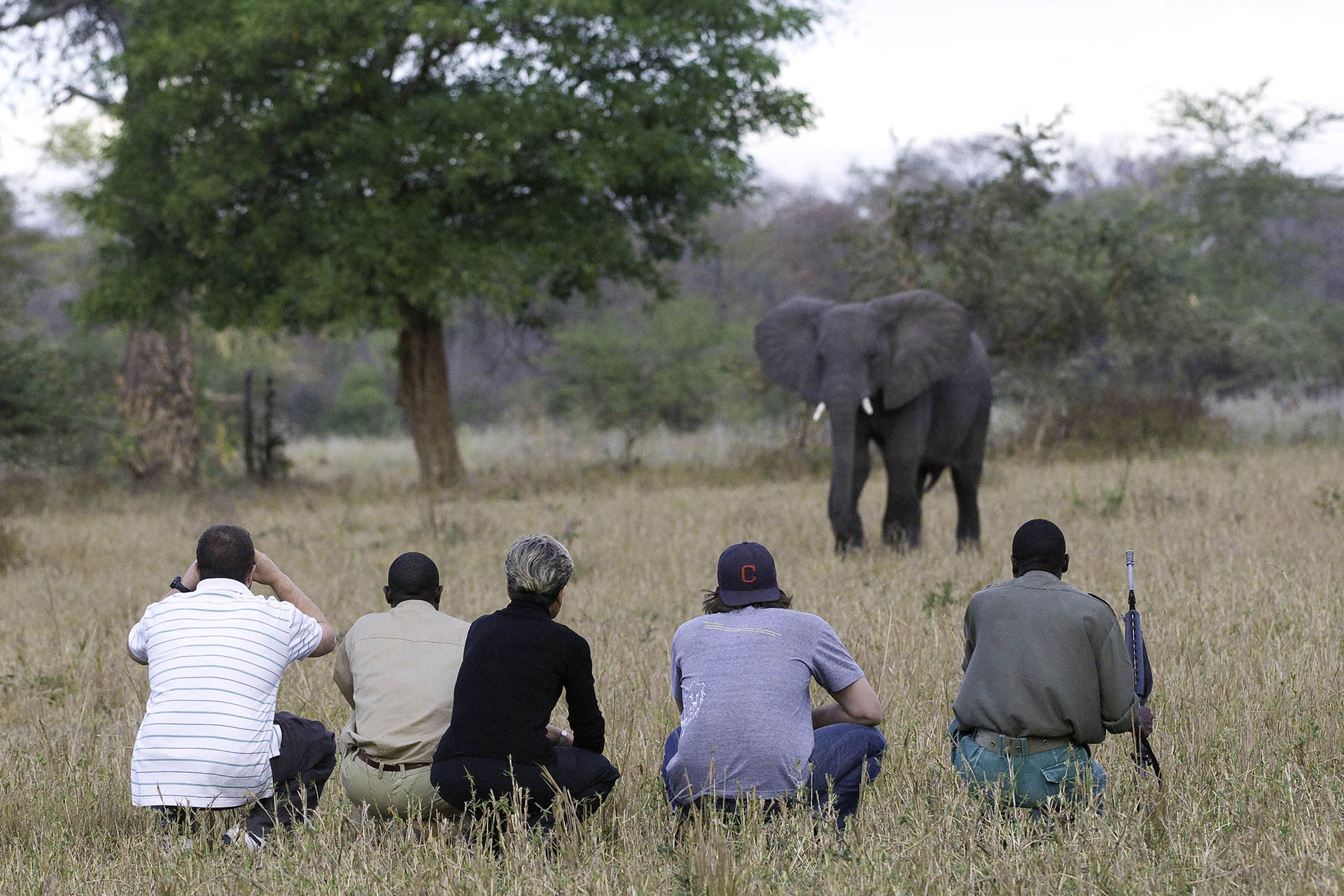 liwonde national park malawi-national-parks-reserves-malawian-style-malawi-adventures-experiences-holidays-specialist-tour-operator-mvuu-walking-safari-liwonde