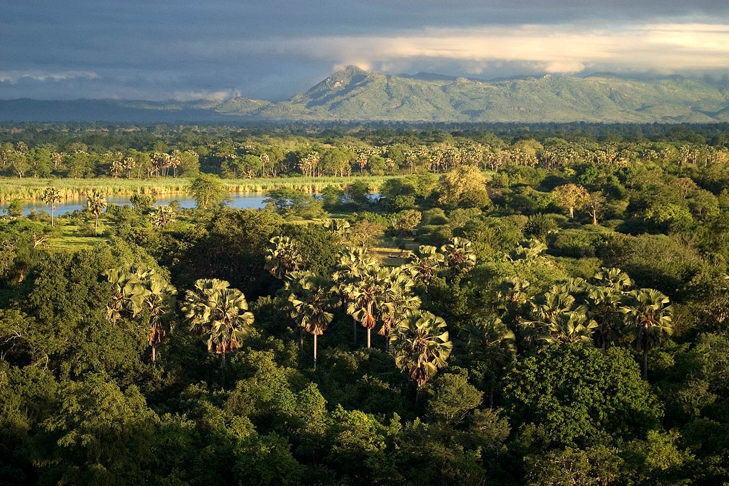 liwonde national park malawian-style-malawi-adventures-experiences-holidays-specialist-tour-operator-malawi-national-parks-reserves-aerial-view
