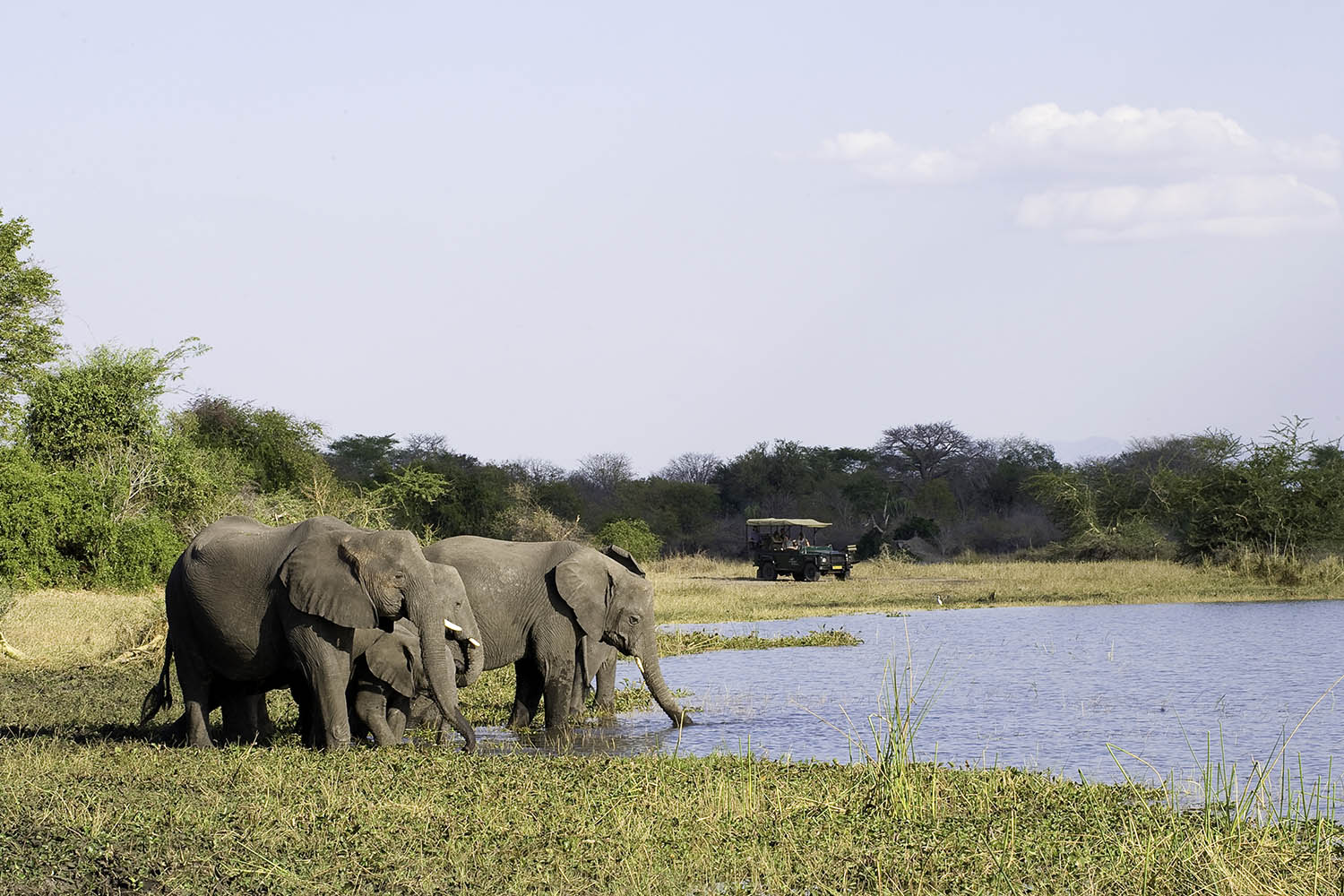 liwonde national park malawian-style-malawi-adventures-experiences-holidays-specialist-tour-operator-malawi-national-parks-reserves-mvuu-game-drive