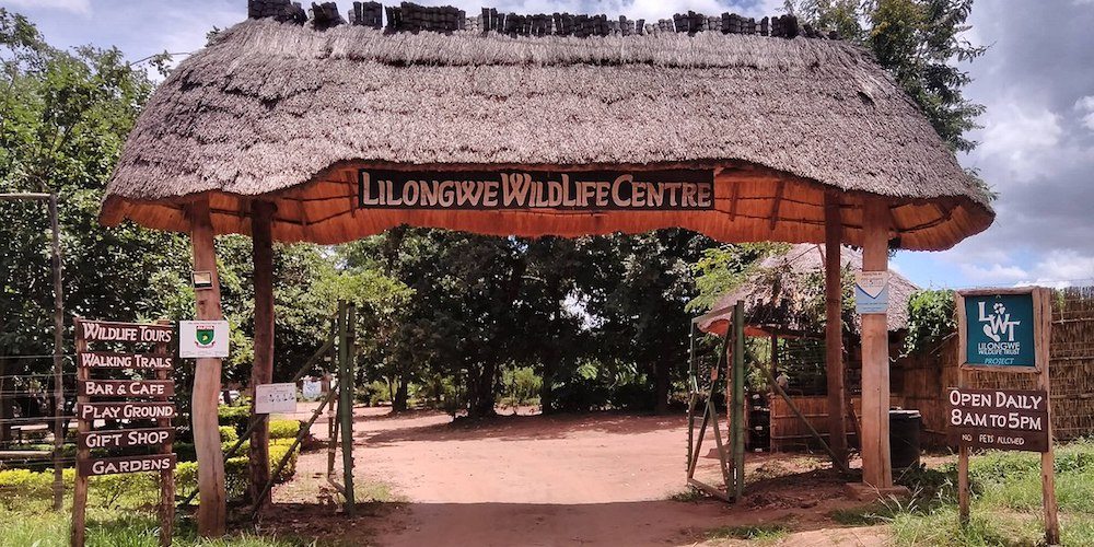 malawian style lilongwe guesthouse lodges-guesthouse-our-destinations-malawi-adventures-experiences-specialist-tour-operator-lilongwe-wildlife-centre