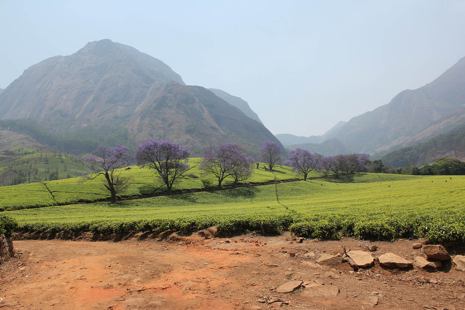 mount mulanje malawi-points-of-interestmalawian-style-malawi-adventures-experiences-specialist-tour-operator-mountain-range-mountain-views