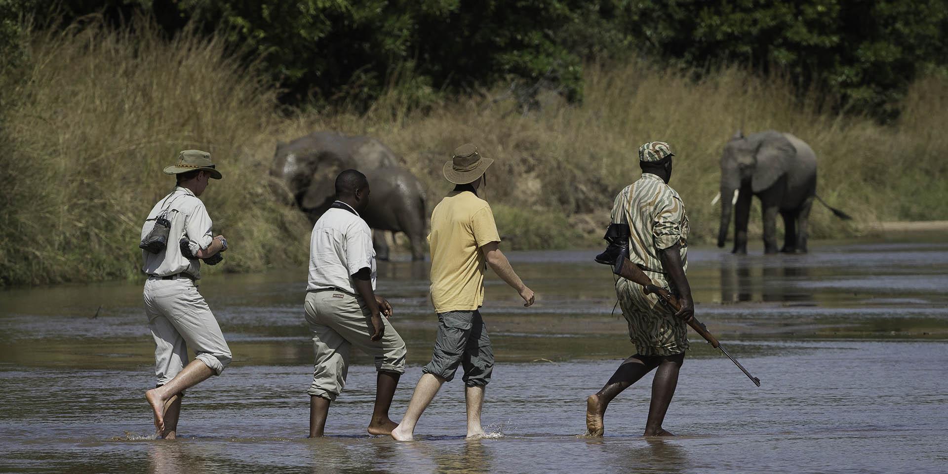 tailor made tours-safaris-malawian-style-malawi-adventures-experiences-holidays-specialist-tour-operator-malawi-adventure-kuyenda-elephants-guided-walk