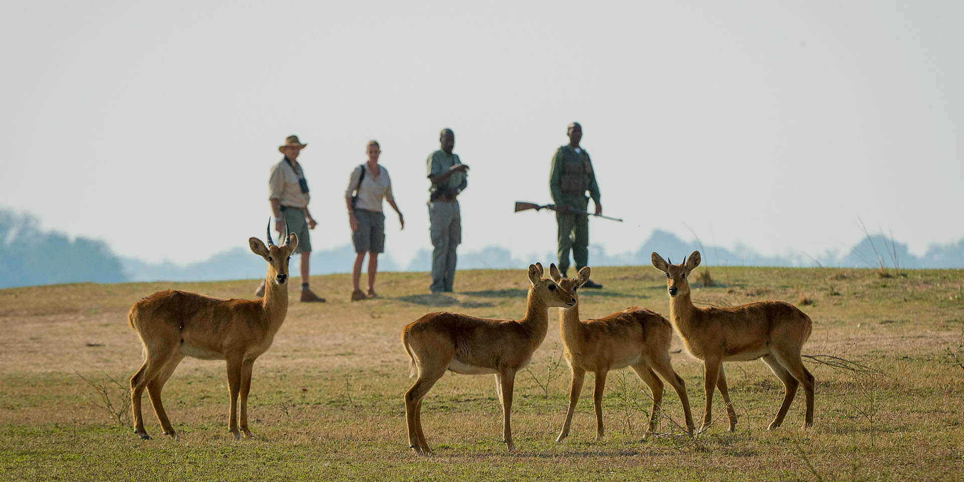 short breaks south luangwa tours-malawian-style-malawi-adventures-experiences-holidays-specialist-tour-operator-malawi-wildlife-guided-walks