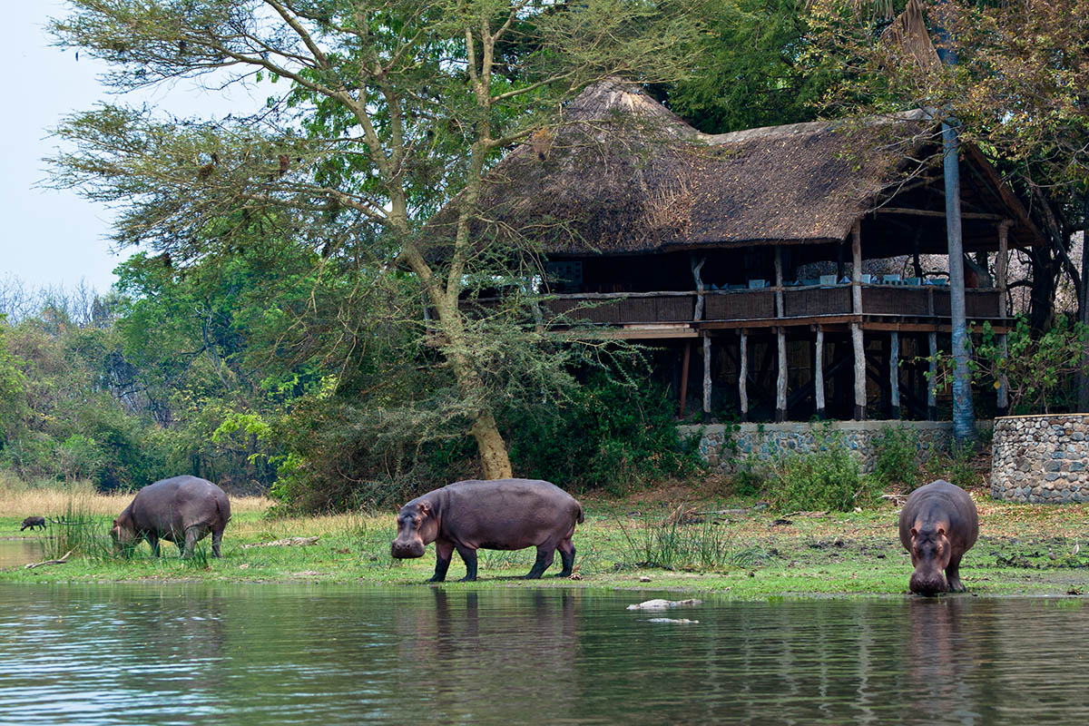 mvuu lodge hippos-lounge-deck-exterior-malawi-lodges-malawian-style-malawi-adventures-experiences-holidays-specialist-tour-operator-malawi