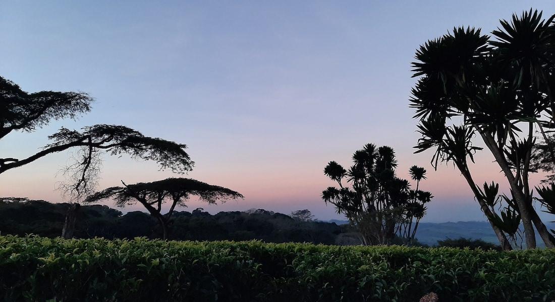 huntingdon sunset