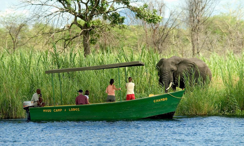 boat safari, liwonde