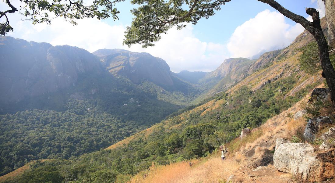 mulanje mountain landscape